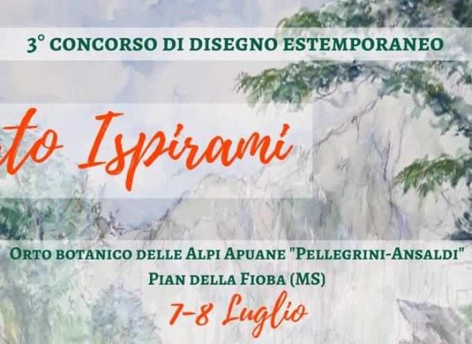 aperte iscrizione al concorso di disegno estemporaneo sull'Orto Botanico delle Alpi Apuane