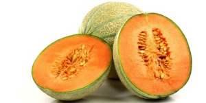 melone-sardegna