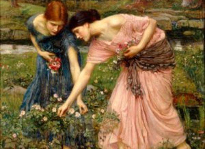 """Accadde oggi, 24 Giugno: la tradizione di raccogliere le """"erbe delle streghe"""" all'alba di questo giorno!!"""