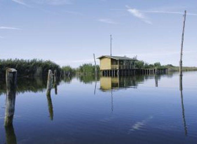 Aumenta il controllo sugli argini del Lago di Massaciuccoli