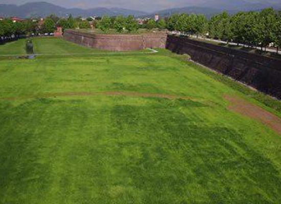 Lucca pensa al tempio crematorio; Marchetti, Martinelli e Testaferrata (FI). «No al fai-da-te locale in assenza di programmazione complessiva