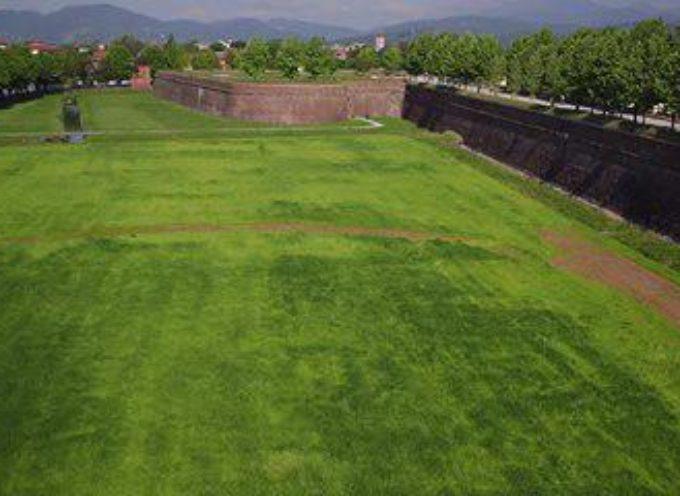 l'area verde intorno alle Mura è intangibile.