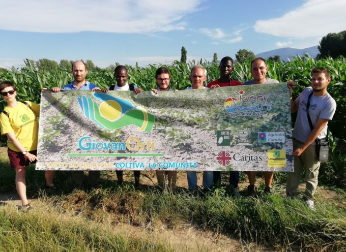 Giovan'Orti, a Lucca il progetto per valorizzare i terreni incolti, agricoli e 'sociali' di Capannori