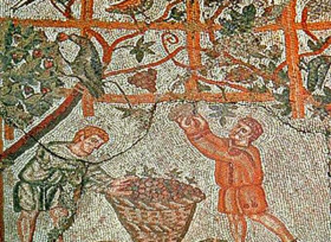 Nell'Antica Roma, 19 Agosto, Feste di Vinalia Rustica e la nascita della religiosità nella Colonia di Lucca