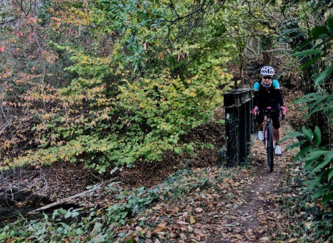 Percorso nel bosco con le bici