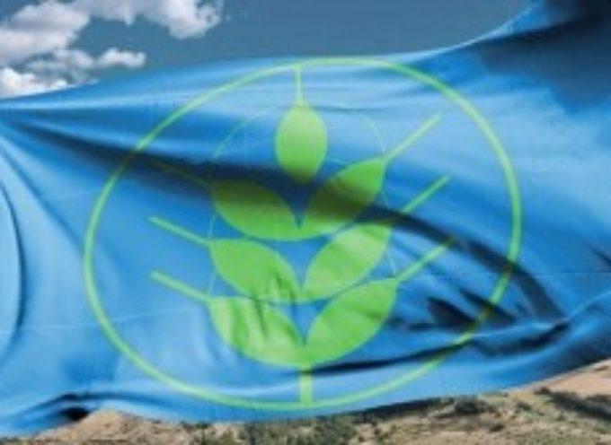 Premio ai comuni più sostenibili, In Toscana 5 località hanno ottenuto la Spiga Verde