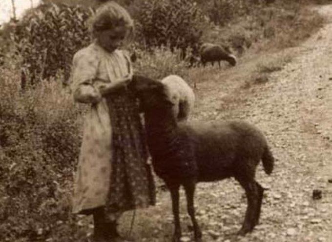 I bambini e il lavoro nella società rurale.