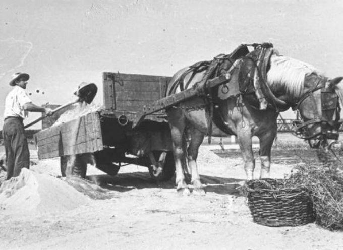 I vecchi mestieri: i lavoratori del fiume, i renaioli.