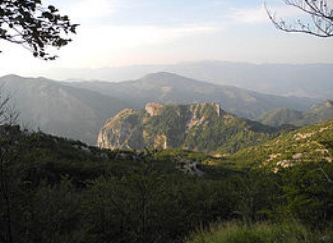 """29 Agosto 1944: """"La Battaglia sul Monte Rovaio"""".."""