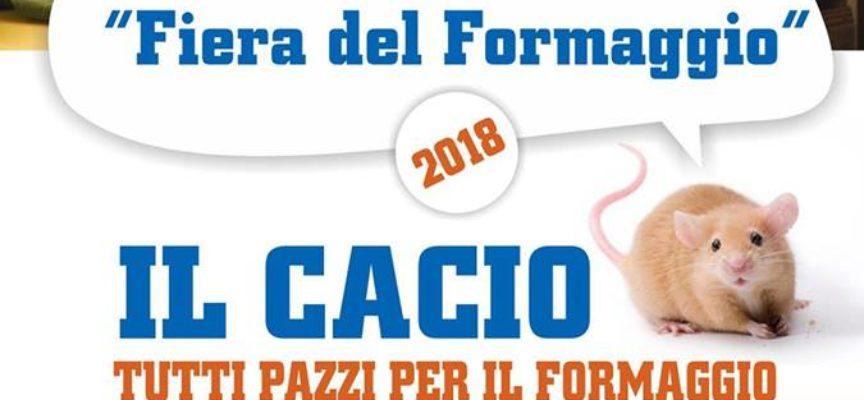 LA FIERA DEL FORMAGGIO SABATO DOVE…. A CASTELNUOVO DI G.