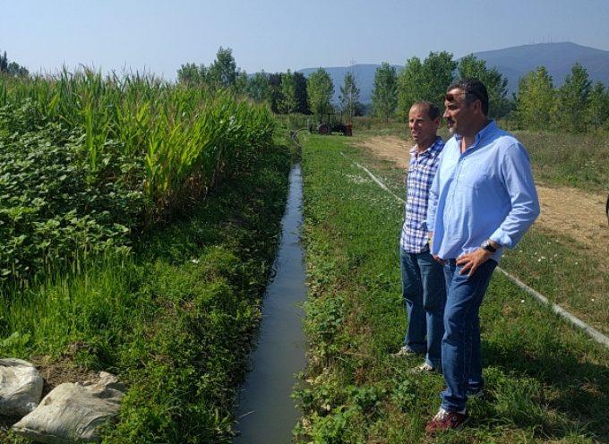 """Gli agricoltori del Padule ringraziano il sindaco:   """"Oggi anche noi abbiamo sufficiente disponibilità di acqua   per irrigare i nostri campi"""""""
