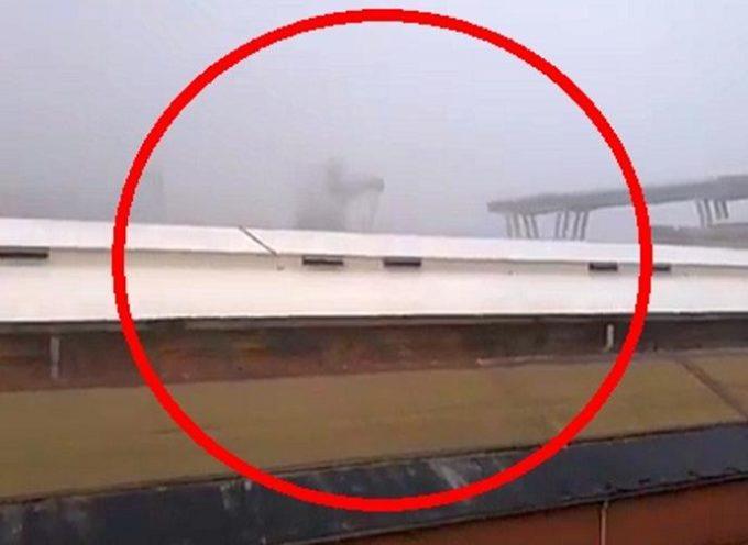 Tragedia a Genova, ponte collassato: ci sarebbero almeno 20 vittime. Almeno una decina i veicoli coinvolti nel cedimento.