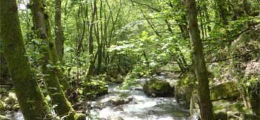 Progetto speciale cave: monitoraggio delle acque superficiali e sotterranee