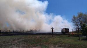 incendio badia pozzeveri_località tazzera (1)