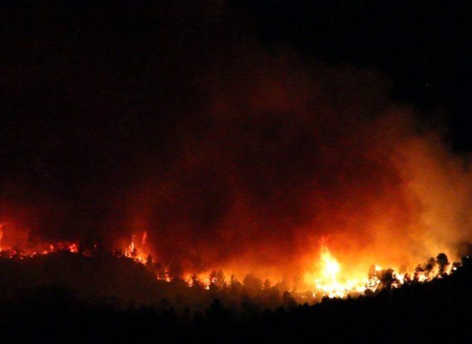 Notte di fuoco sulle colline di Massa Macinaia, incubo piromani