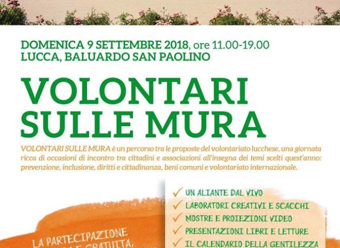 vi aspettiamo a VolontariSulleMura, una festa di tantissime associazioni!