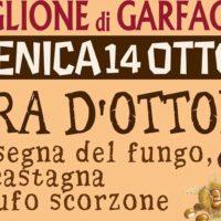 FIERA D'OTTOBRE, 12° Rassegna Fungo, Castagna e Tartufo Scorzone.