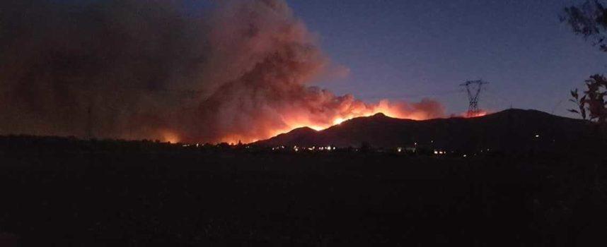 incendio Monte Serra, mozione unanime chiede risorse per risarcimento privati e aziende