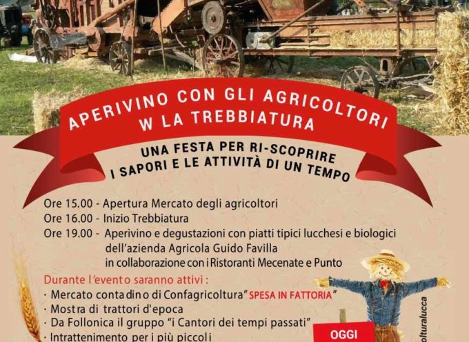 """Fai la spesa in fattoria"""": sabato 15 settembre al Mercato di Pulia ci saranno i prodotti della terra e dell'artigianato lucchese"""