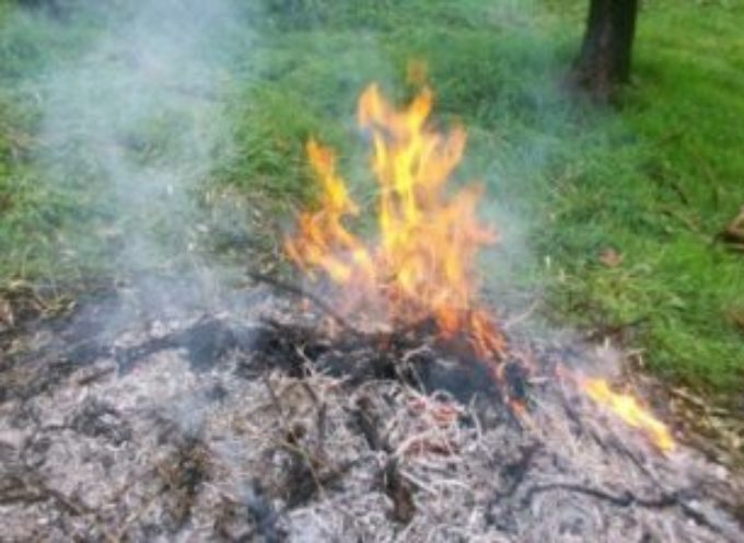 Ordinanza divieto abbruciamento vegetali  nel comune di Porcari