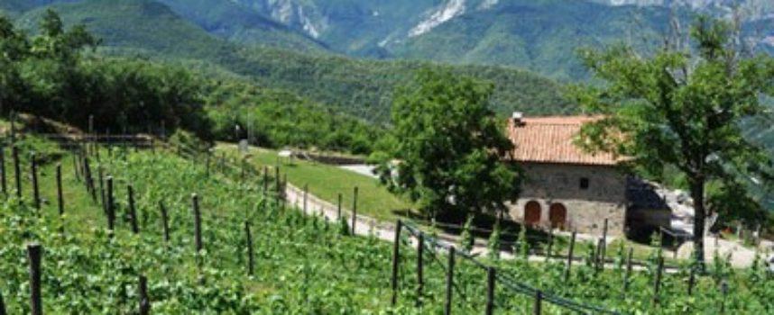 Il Parco delle Alpi Apuane