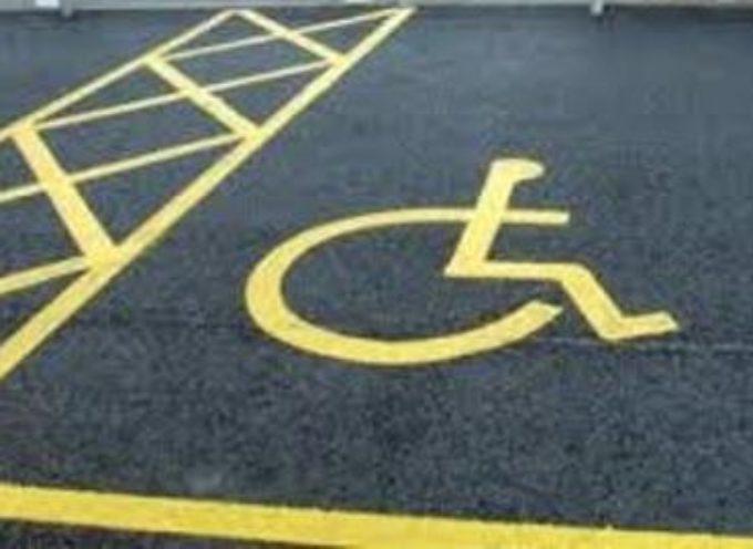 Sosta disabili personalizzata: dopo il Tar anche il Ministro delle infrastrutture e trasporti dà ragione al Comune di Lucca