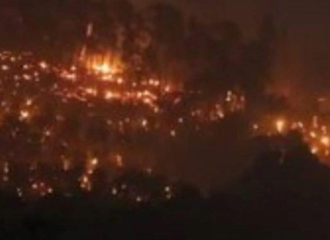 Pisa: oltre 600 ettari di bosco, ormai si parla di disastro ambientale. Nuovo incendio a Massarosa