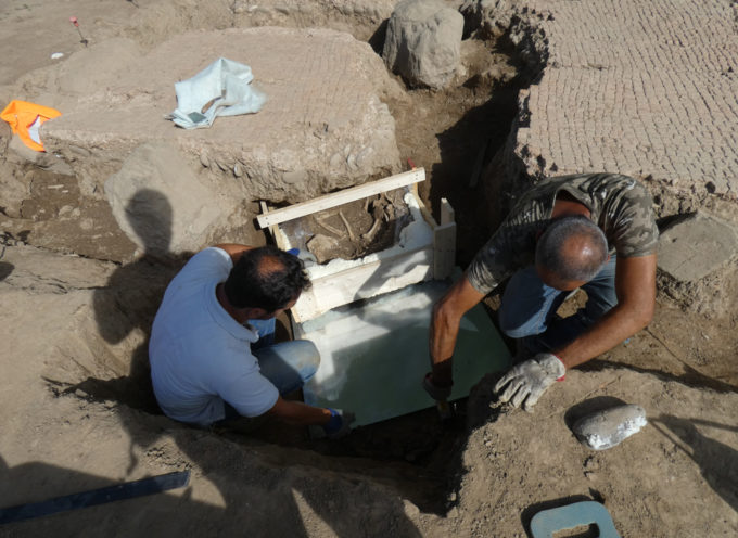 SCAVO ARCHEOLOGICO DI TASSIGNANO, RIMOSSO IL CANE DI 2000 ANNI FA