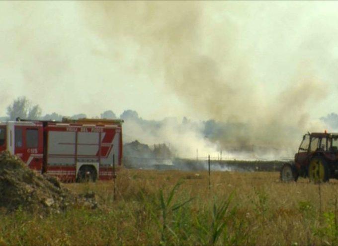 Incendio di torba in località Botolo, anche il Consorzio pronto a fare la sua parte