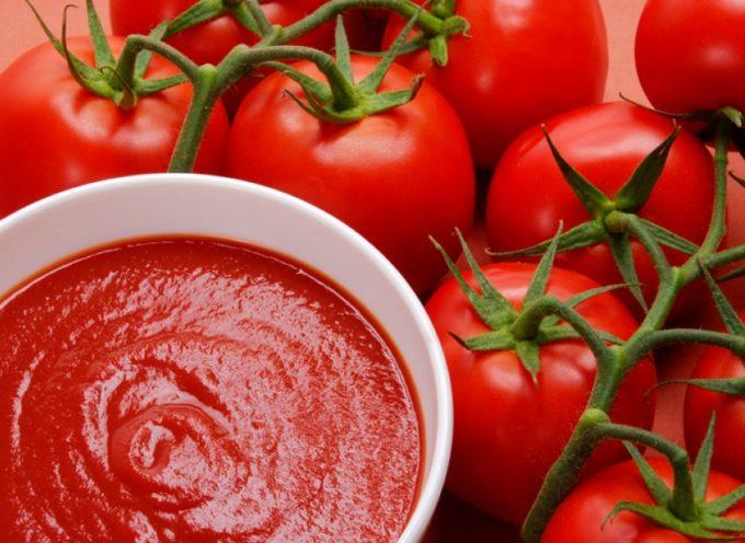 Pomodoro da salsa, Confagricoltura: «Produzione in calo del 40%, persi oltre 5 milioni di euro»