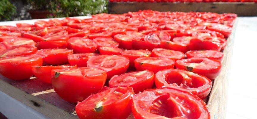 Allerta pesticida Clorpirifos in pomodori italiani