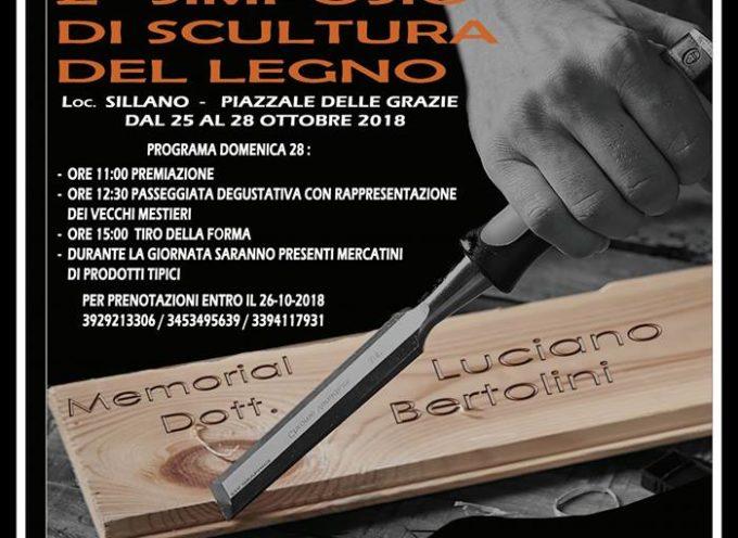 2° Simposio di scultura del legno…. 25-28 Ottobre! – NEL COMUNE DI SILLANO GIUNCUGNANO