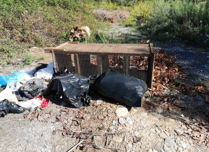 San Pietro a Vico, in un campo abbandonato, che costeggia la ferrovia, si abbandonano rifiuti di tutti i tipi.