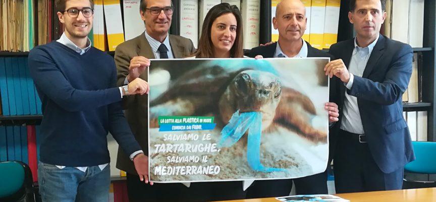 """Parte dai corsi d'acqua la campagna """"Salviamo le tartarughe, salviamo il Mediterraneo"""":"""