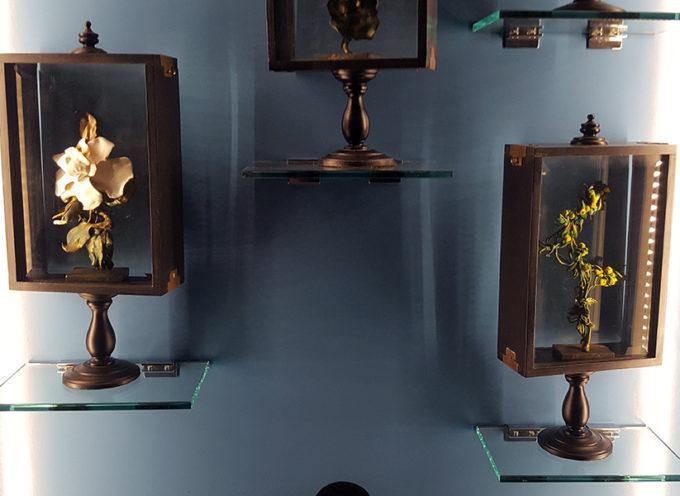 Il Naso e la Storia: apertura straordinaria per il percorso olfattivo a Palazzo Ducale