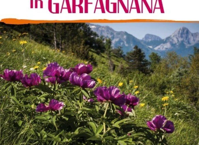 Fine settimana con molti eventi in Garfagnana