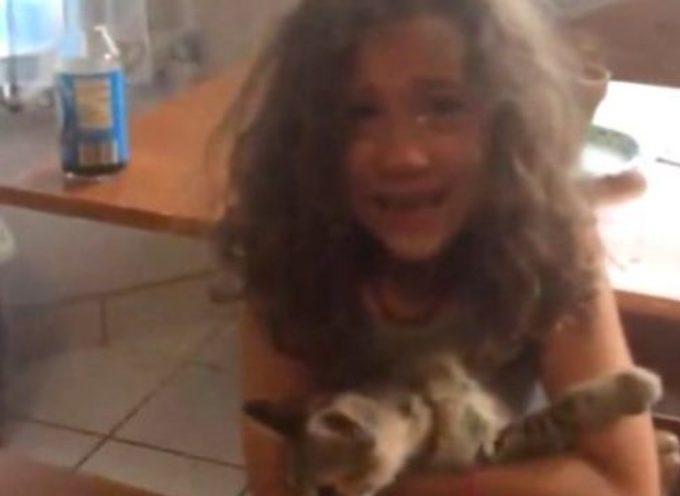 La bella reazione di una ragazza appena sà che adotterà un gattino