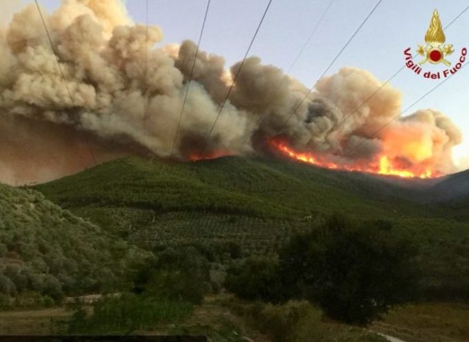 Incendio boschivo Monte Serra: i risultati della ricerca di microinquinanti in aria