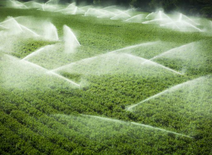 Fondi Ue: Toscana, fondi per 5 mln per irrigazione agricoltura