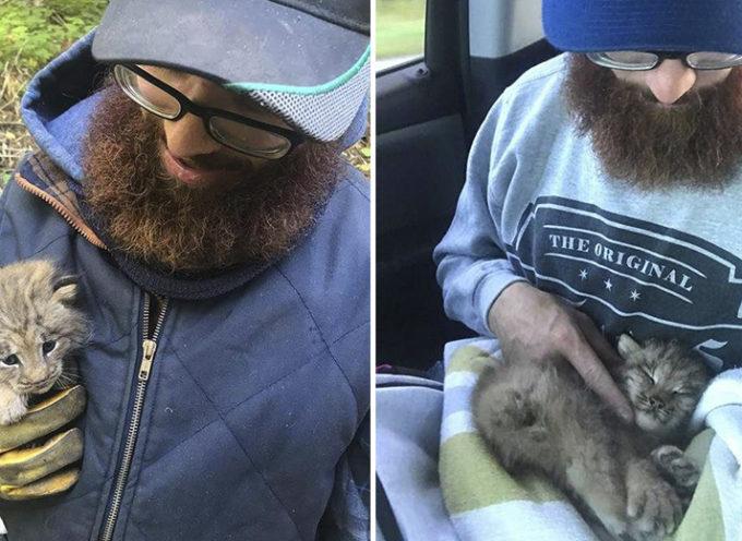 """Scoprono che il piccolo """"gattino"""" che hanno trovato abbandonato nella foresta non era proprio un gattino"""