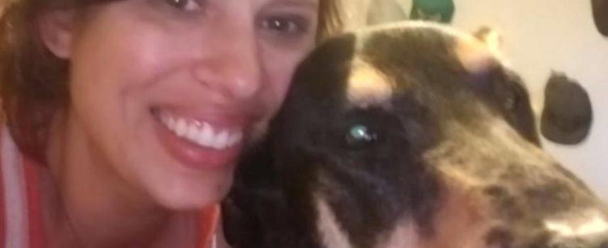 Perde il cane e per 4 anni non sà nulla, ma il destino vuole che…[VIDEO]
