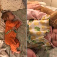 Squinty, il gatto che non riesce a smettere di coccolare il nuovo neonato della famiglia