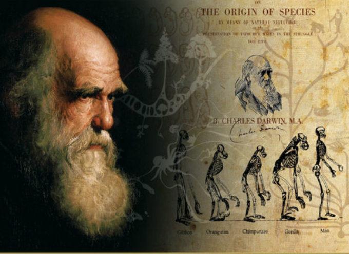 Accadde Oggi, 24 Novembre: 1859, Darwin pubblica l'Origine delle Specie – 1974, si scoprono i resti di Lucy, la nostra progenitrice più lontana