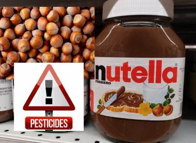 Pesticidi nella Nutella? Nelle nocciole potrebbe esserci un diserbante vietato in UE