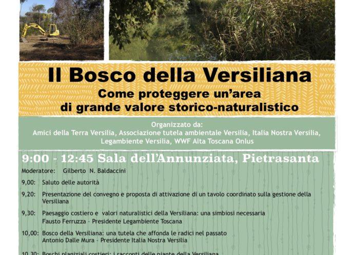 Il Bosco della Versiliana Come proteggere un'area di grande valore storico-naturalistico