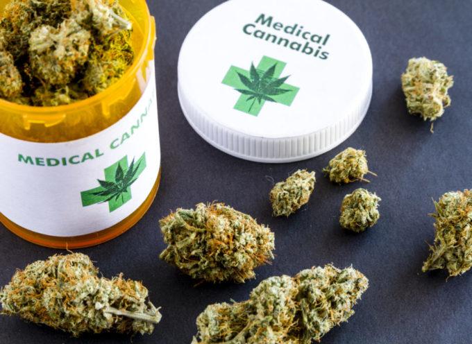 Cannabis terapeutica: 1 persona su 2 che la prova ABBANDONA I FARMACI!
