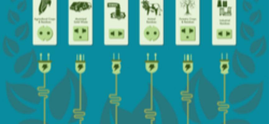 Una biblioteca virtuale al servizio della bioeconomia
