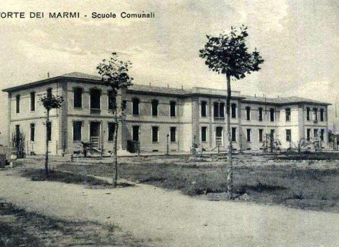 VERDE PUBBLICO – LA GIUNTA COMUNALE ha approvato il progetto di riqualificazione delle alberature pubbliche