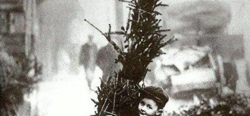 La Festa dell'Immacolata Concezione che si festeggia oggi 8 Dicembre ha un doppio volto: