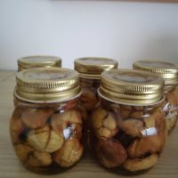Le conserve di stagione: le castagne sciroppate, della garfagnana